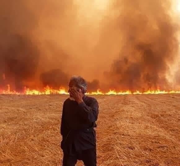 Crop fires target Yezidi farmers