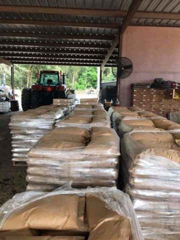 Seeds of Life seeds await shipment from New Delhi to Ezidikhan. Photo taken 2019-02-10